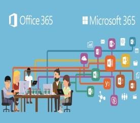 Office 365 / Microsoft 365 관리자 교육