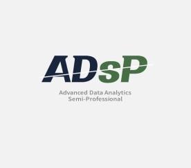 데이터 분석 준전문가 (ADsP)