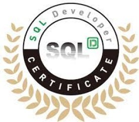 SQL개발자(SQLD) 자격 대비